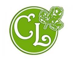 Corriander Leaf: Indian family restaurants in Yangon